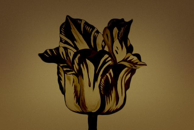 Tulips Celebrancy funerals